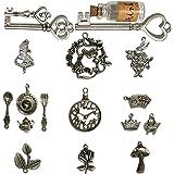 N'joy 18-Piece Alice in Wonderland Fairy Tales Tea Party Steampunk Victorian Necklace Bracelet Charms,Antique Silver