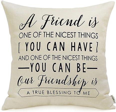 Meekio Friendship Gifts Throw Pillow Covers