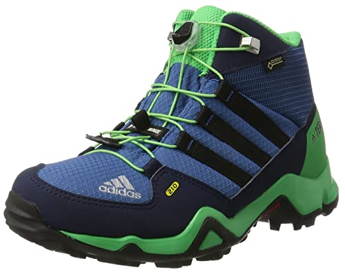 d4dcfe27f adidas Kids  Terrex Mid GTX Low Rise Hiking Shoes Blue core Black Energy