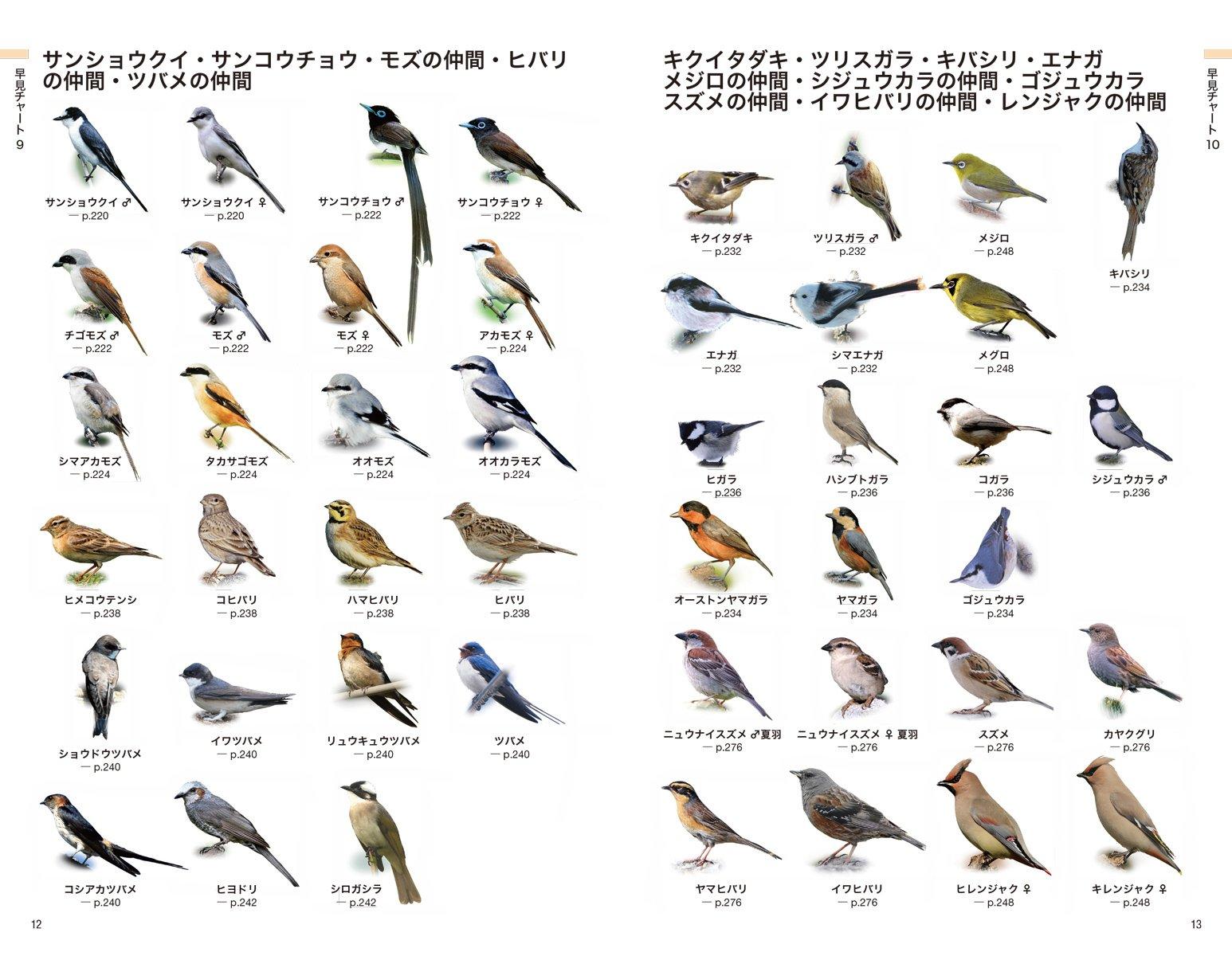 日本の野鳥一覧 - List of birds...