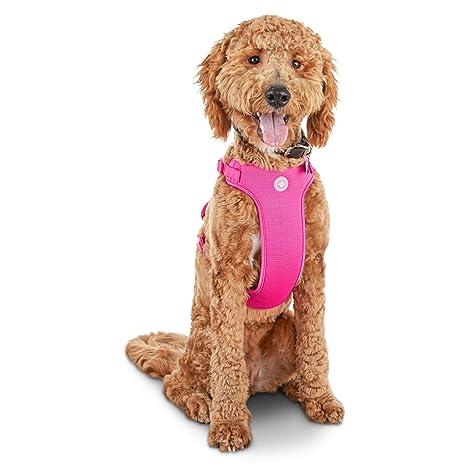 GOOD2GO - Arnés para Perro Grande, Color Rosa: Amazon.es ...