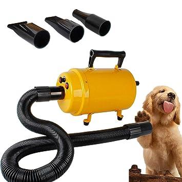 Forever Speed Mascotas Secador de Cabello Secadora De Pelo Para Mascotas perros Potencia 2800W Temperatura y Velocidad Ajustable (Amarillo): Amazon.es: ...