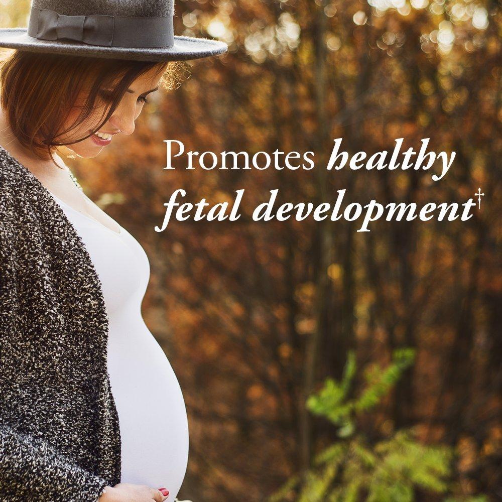 Garden of Life Organic Prenatal Multivitamin Supplement with Folate ...