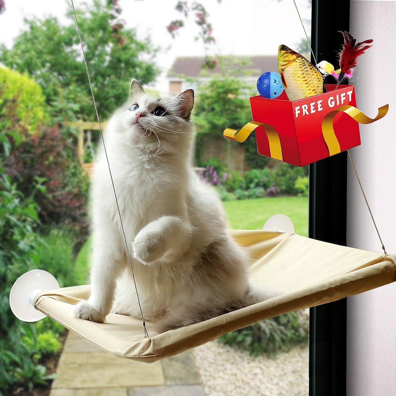 Amazon.com: Petvins - Percha para ventana de gato con ...
