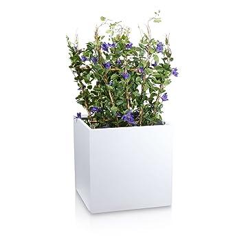 Pflanzkübel CUBO Fiberglas Pflanztopf - Farbe: weiß matt - robuster ...