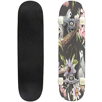 Classic Concave Skateboard Watercolor Tropical Pattern with Lemurs passionflower Eucalyptus Pink Longboard Maple Deck Extreme Sports and Outdoors Double Kick Trick for Beginners and Professionals : Sports & Outdoors