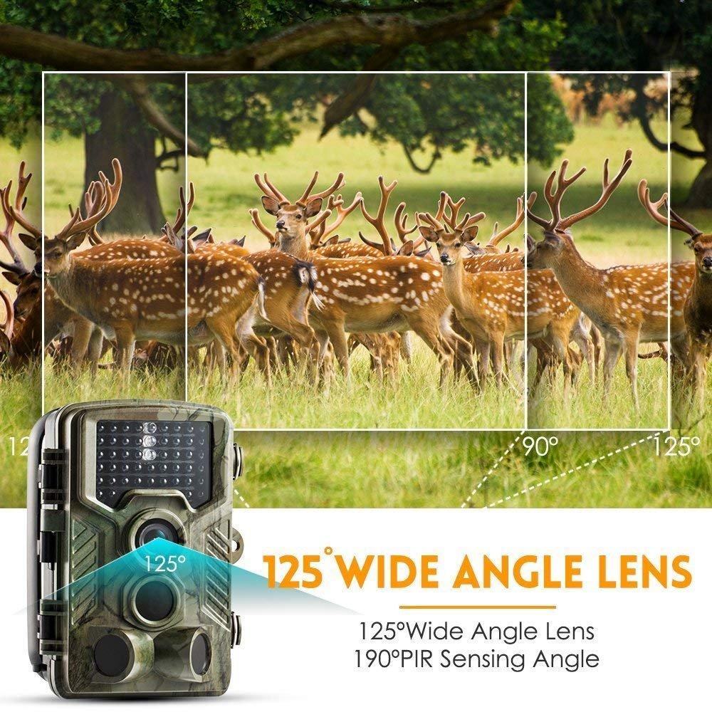 COOLIFE C/ámara de Caza 16MP 1080P HD Trail C/ámara con Visi/ón Nocturna Impermeable IP56 con PIR Infrarrojo Sensor de Movimiento 46 Pcs IR Leds de 2.4 LCD con 32G Tarjeta Micro SD