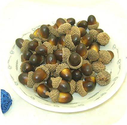 10pcs Artificial Mini Acorn Oak Foam Nut Christmas Tree Ornaments Xmas Decor xl