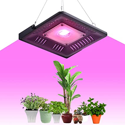 Lampara Led Cultivo, OIZEN 50W Lampara Led Grow Light para Plantas de Interior Iluminación Cultivo