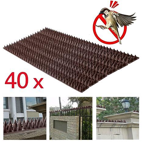 Pinchos para defensa de pájaros de Forever Speed contra palomas, gorriones y pichones, color