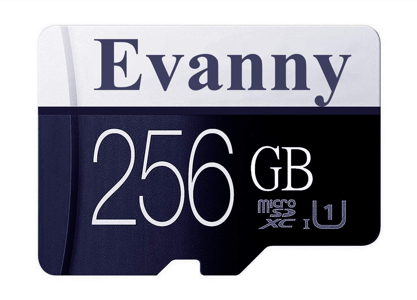 Evanny 256GB Micro SD SDXC Memory Card High Speed Class 10 with Micro SD Adapter(E67-EN1)