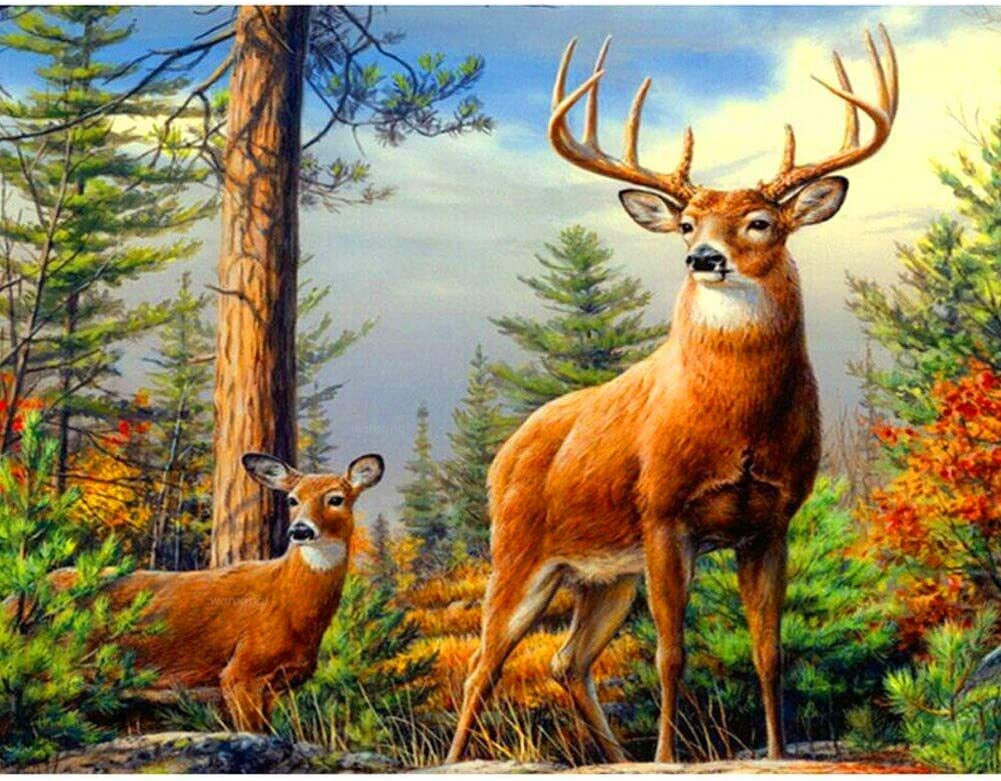 Deer Territory Full Square Drill DIY 5D Diamond Painting Cross Stitch Kits Home