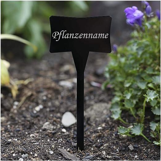 Acrílico cristal – Etiquetas para plantas (Esclavo Negro – Jardín ...