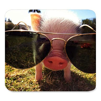 Amazon Com Cut Pig Mousepad Custom Rectangle Mouse Pad Extended