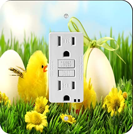Rikki knight 1154 easter chicks in tall grass design light switch rikki knight 1154 easter chicks in tall grass design light switch plate mightylinksfo