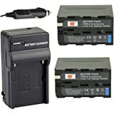 DSTE® アクセサリーキット NP-F970 NP-F950 NP-F930 互換 カメラ バッテリー 2個+充電キット対応機種 NEX-FS700RH NEX-EA50CH NEX-EA50CK HXR-NX3
