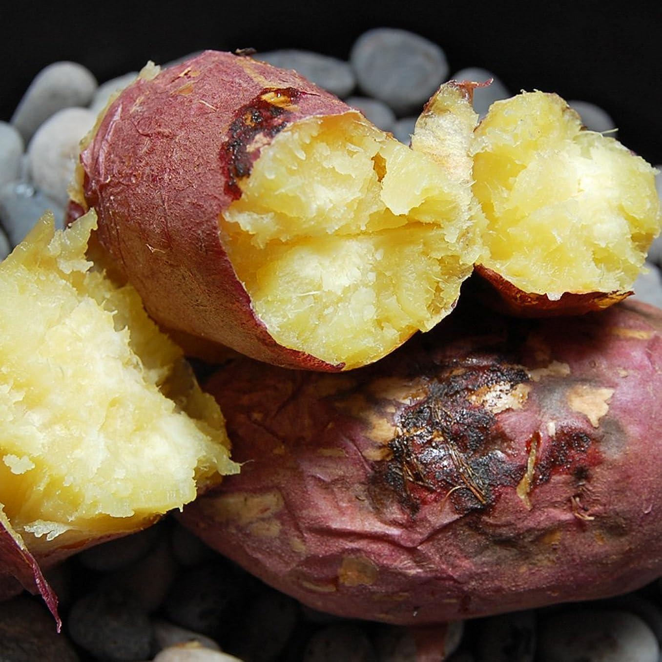家事忠実立方体九州産 熊本産 極甘 わけあり 紅はるか 完熟 蜜芋 5キロ…