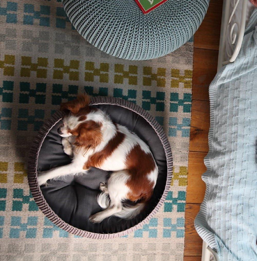 Amazon.com: Keter Knit Cozy Resina de plástico Pet, cama Cat ...