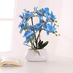 KINBEDY Artificial Bonsai Silk Orchids Phalaenopsis with Vase Home Office Decoration Party Decor Blue.