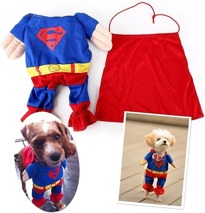 Disfraz marca EQLEF de Superman