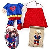 EQLEF® Kleidung für Hunde Katze Pet Puppy Dog Cat Pet Clothes, Superman Hundewelpen Katzen-Halloween-Kostüm-Kleidung-Haustier-Kleid Dress Up Superhund - Tierbedarf