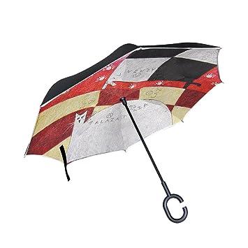 BENNIGIRY Paraguas Exterior Negro para Gato, Pintura UV Anticaloría, sombrilla, Elegante Reverso de