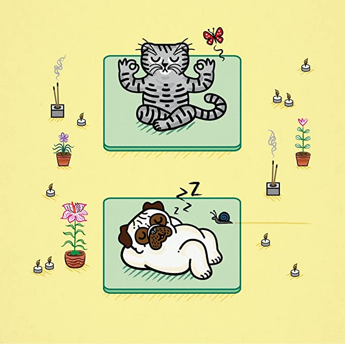 Amazon.com: Yoga Poses - Pug and Cat - childrens art poster ...