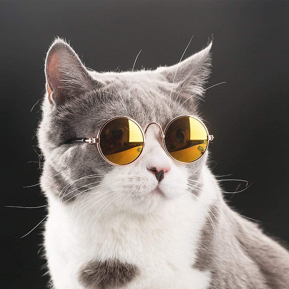 Amazon Com Coolrunner Cute And Funny Pet Sunglasses Classic Retro Circular Metal Prince Sunglasses For Cats Or Small Dogs Fashion Costume Pet Supplies