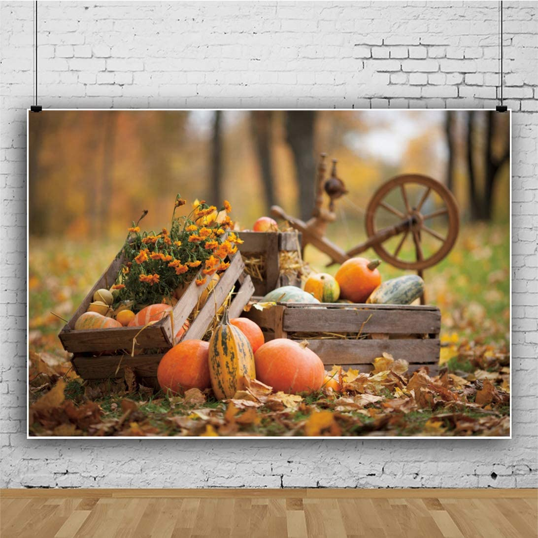OERJU 10x8ft Thanksgiving Background for Photoshoot Bokeh Forest Floral Pumpkins Wheels Backdrops for Photography Harvest Day Decorations People Portrait Photo Studio Props Vinyl Wallpaper