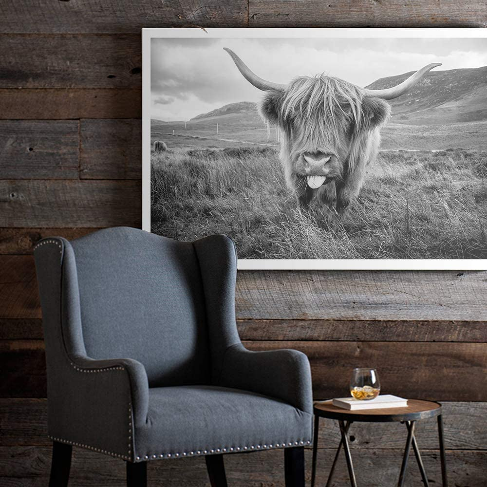 Scottish Highland Cow Art Print Poster Canvas Print Wall Art, Unframed, for Wall Decor Home Decor (Cow2, 16x24 Inch)