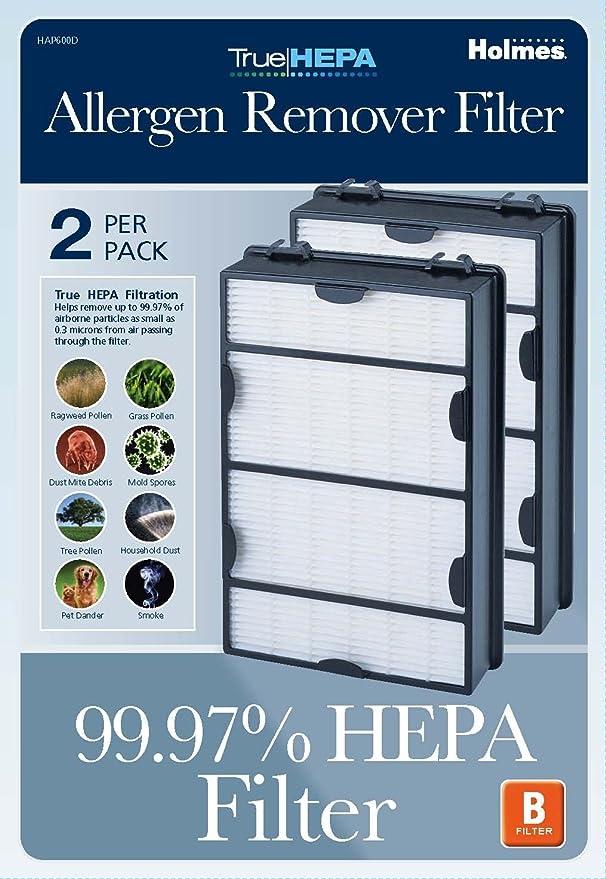 .com: holmes true hepa filter hapf600d-u2, filter b, 2 pack ...