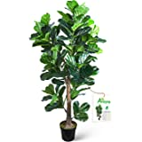 Aveyas 6ft Artificial Fiddle Leaf Fig Tree in Plastic Nursery Pot, Ficus Lyrata Fake Tropical Plant for Office House Living R