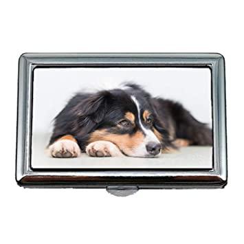 Amazon Cigarette Caseboxdog Thoughtful Quiet Relaxed Cute
