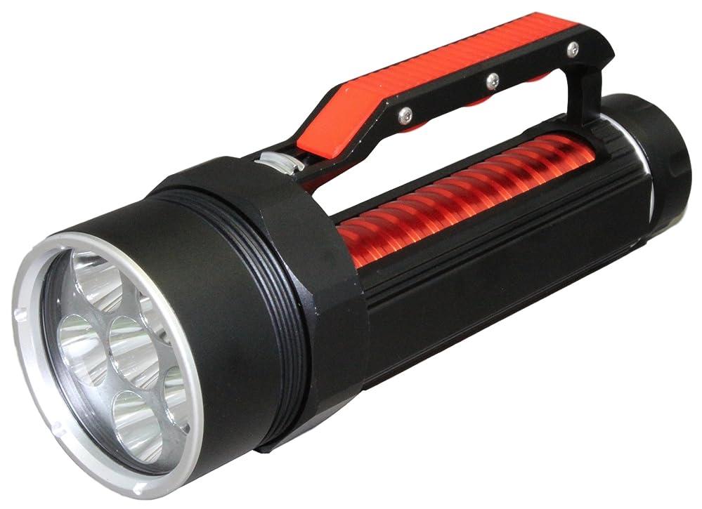 ティッシュティッシュオンTRADE WING 防水 LEDダイビングライト 電池&充電器セット CREE