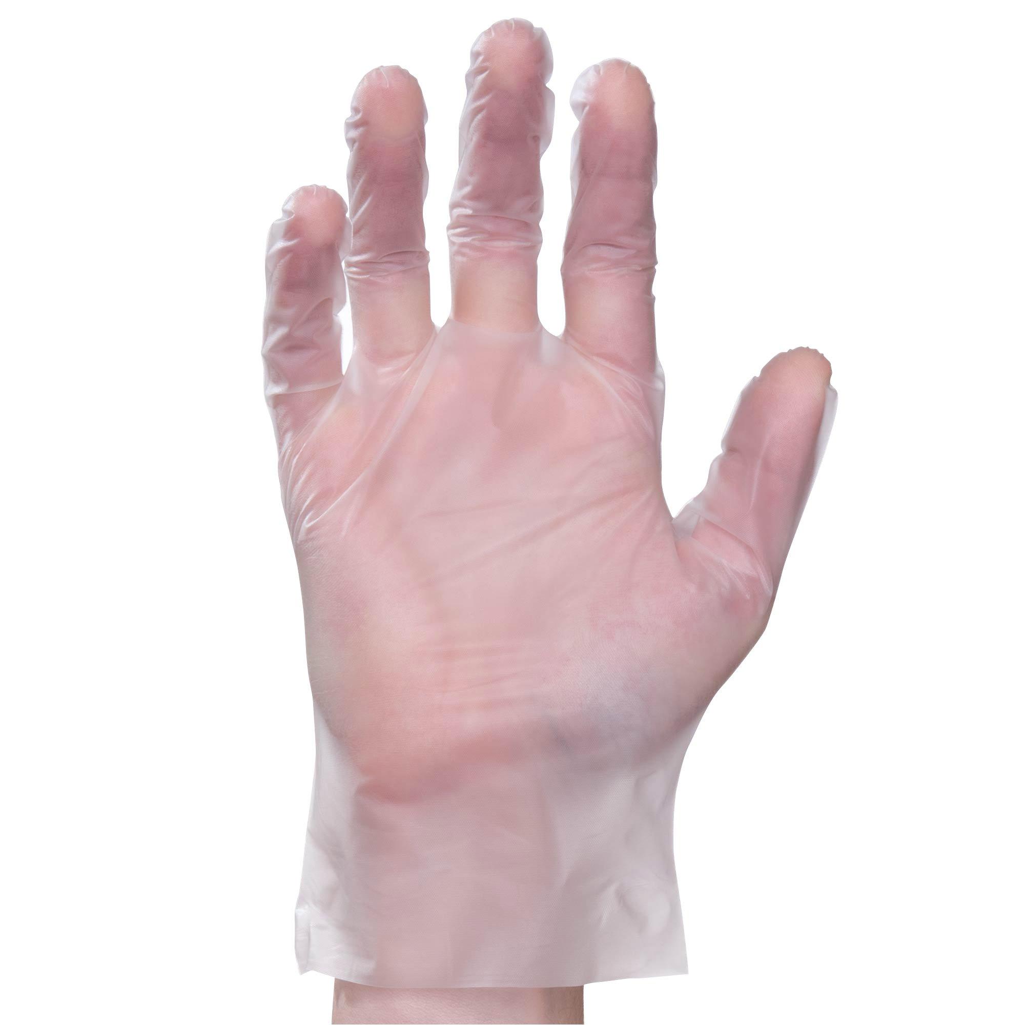 Elara FED201 Digifit Eco Friendly Elastipolymer Hybrid Glove, Phthalate Free, PVC Free, BPA Free, Latex Free, Powder Free, Food Service, Industrial, Janitorial, Large (Case of 1000)