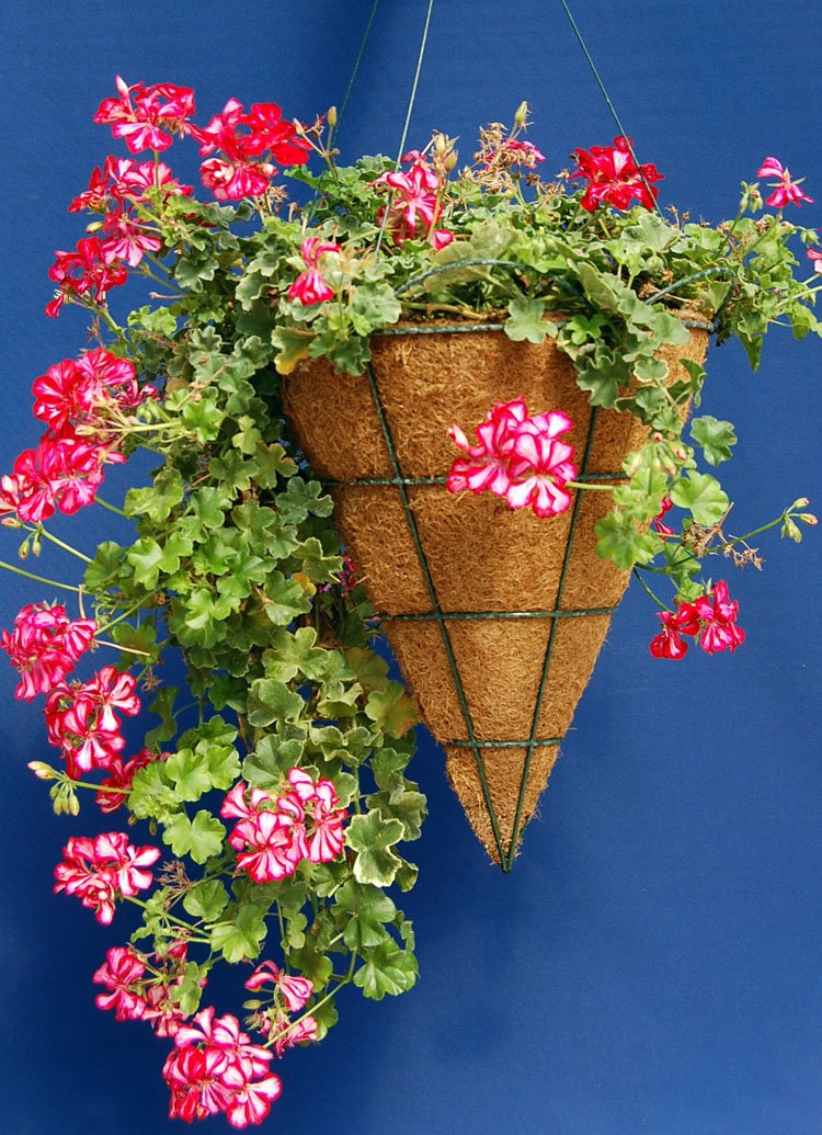 14 Cone Shaped Grower Hanging Basket ST with Liner and Rigid Hanger