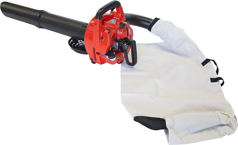 Bricoferr BFG0011 Soplador Aspirador de Hojas con motor a gasolina ...