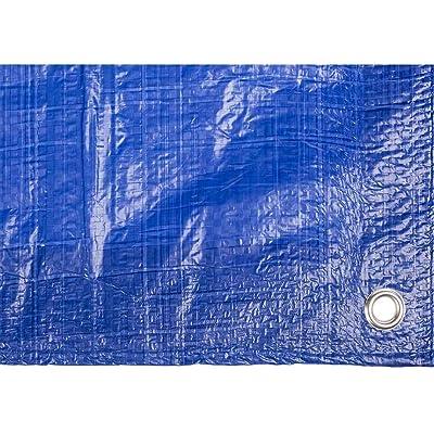 Toldo reforzado gramaje 90 grs, 3 x 2 m, color azul - Catral 560110