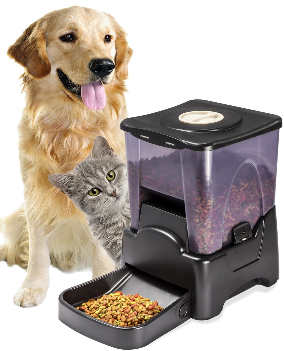 cat portion dispenser using timer and pet dinner dog perfect advance dp automatic feeder mota with