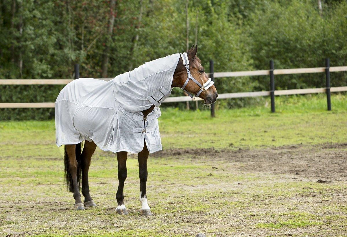 Horze Horse Nevada Grey Combo Removable Neck Piece Turnout/Fly Lightweight Sheet (US 78/EU 145)