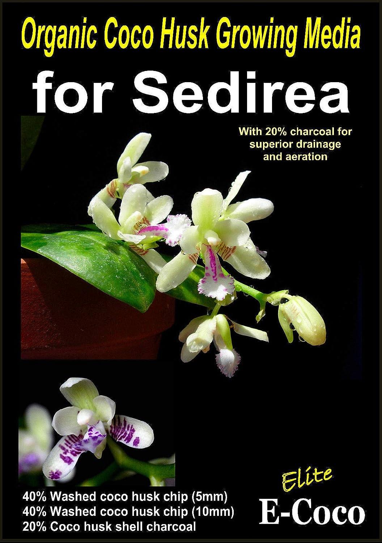 Portal Cool 2, 5 litros: Orgánica sedirea orquídeas de Compost ...