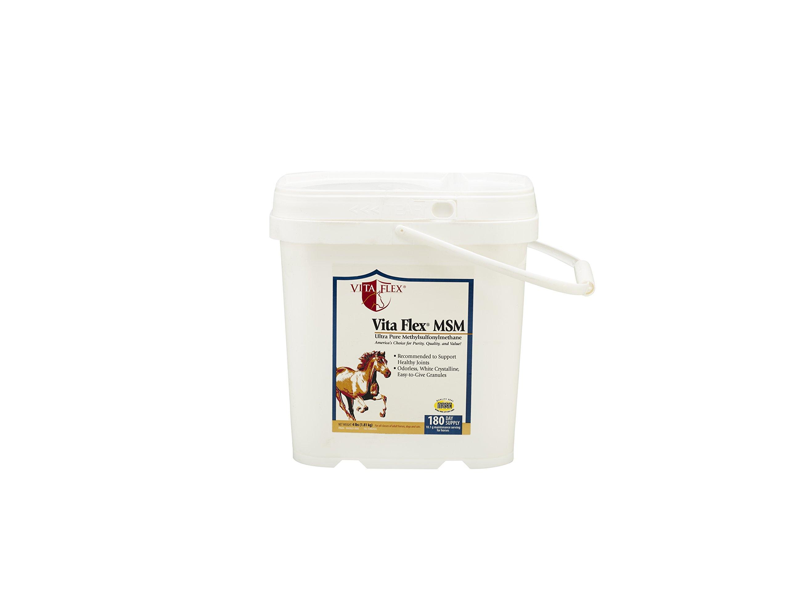 Vita Flex MSM Ultra Pure, Horse Joint Supplement by Vita Flex (Image #1)