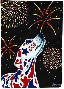 Caroline's Treasures AMB1451GF for Our Heros Fireworks Patriotic Dalmatian Flag Garden Size, Small, Multicolor