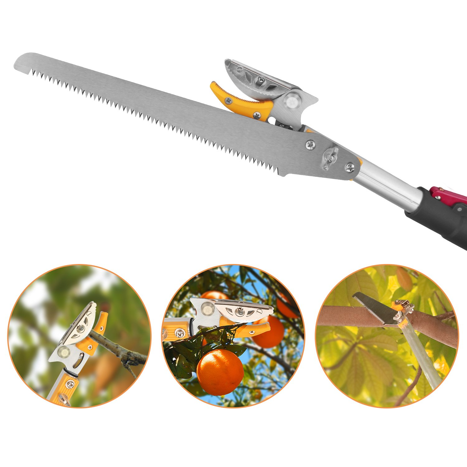 Belpink Long Tree Pruner With Pole Saw | Telescopic Long Reach Fruit Picker 5-13 Feet| Handled Garden bypass Lopper Tree Trimmer Pruning Tool (4.5-9.6 Feet) by Belpink (Image #3)
