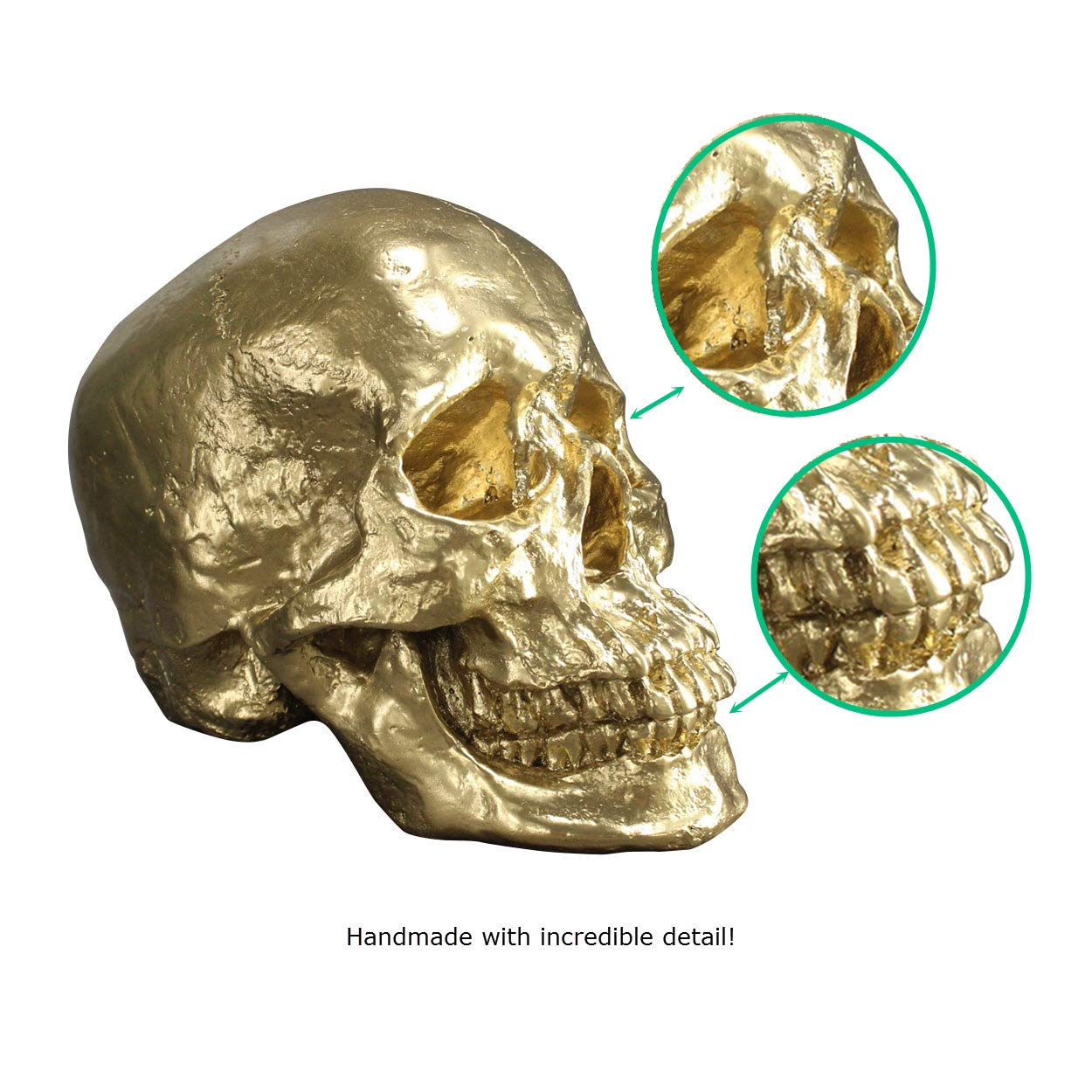 Wall Charmers Life Size Human Skull - 8.5'' Gold Faux Human Anatomy - Table Top Skeleton Head Home Decor by Wall Charmers (Image #3)
