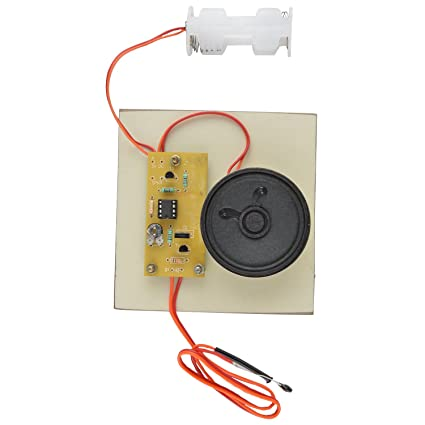 Jeevan Fire Alarm - Assembled Electronics based Project: Amazon.in ...