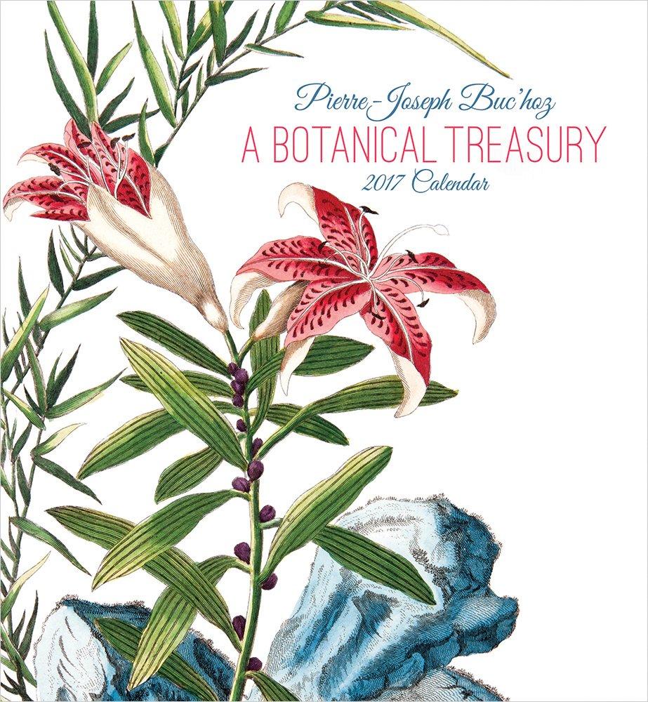 2017 Pierre-Joseph Buchoz: A Botanical Treasury Wall Calendar pdf epub