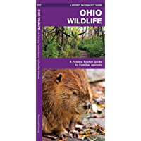 Ohio Wildlife: A Folding Pocket Guide to Familiar Animals (Wildlife and Nature Identification)