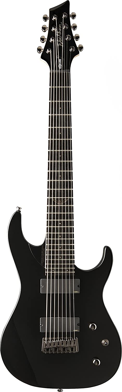 Top 10 Best 8 String Acoustic & Electric Guitar Reviews in 2020 4