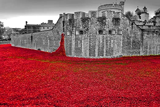 Tower of London Red Poppy Canvas Portrait Wall Art Picture Home Decor